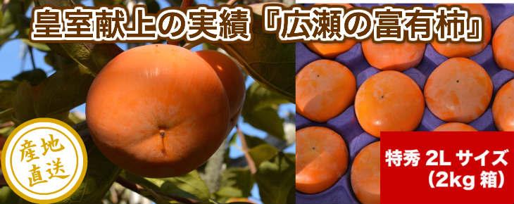 広瀬の富有柿