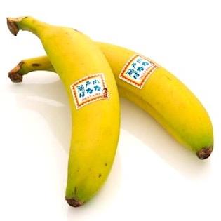 岡山県産 高級瀬戸内バナナ(贈答用)