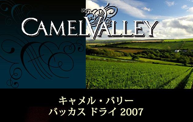 キャメルバリー・バッカス・ドライ2007