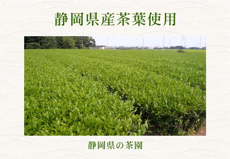 静岡県産茶葉使用 静岡県の茶園