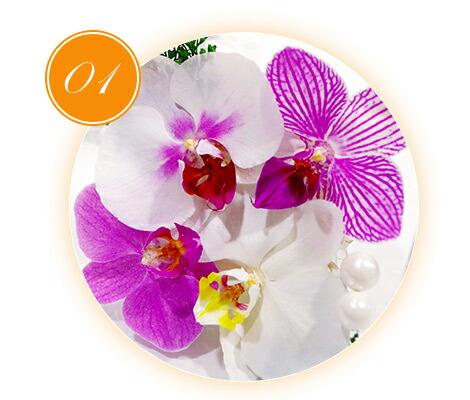 胡蝶蘭やカトレア、デンファレ、シンビジウムを贅沢に使っているフラワーギフトです