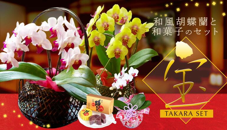 胡蝶蘭と和菓子のセット