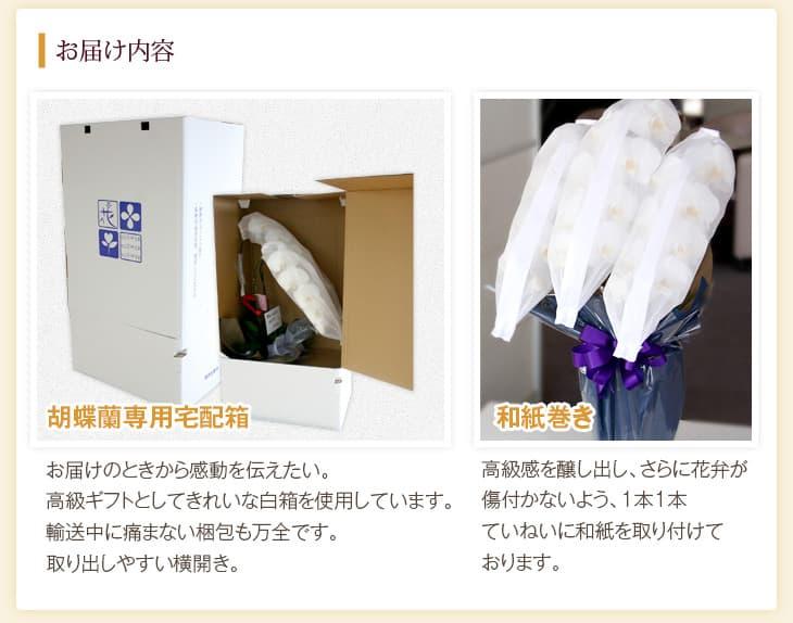胡蝶蘭専用の宅配箱と和紙巻き