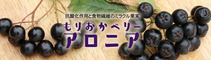 抗酸化作用と食物繊維のミラクル果実 もりおかベリー・アロニア