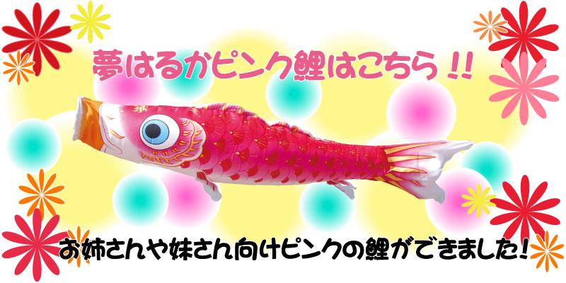 夢はるかピンク鯉