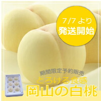 岡山県産白桃