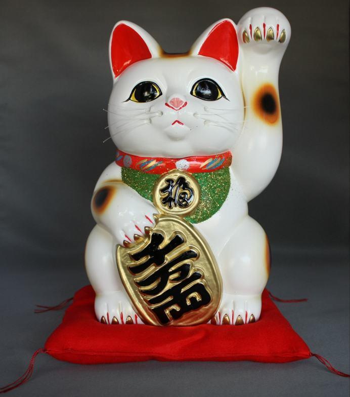 8号招き猫小判白手長(座布団付)