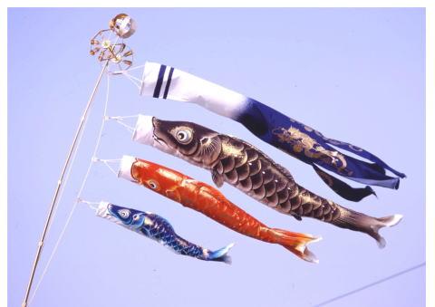 1.5m峰雅鯉万能型スタンドセット【こいのぼり】