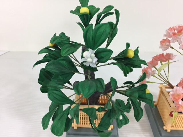 プラ枠井垣桜橘26cm雛飾り付属桜橘訳あり特価