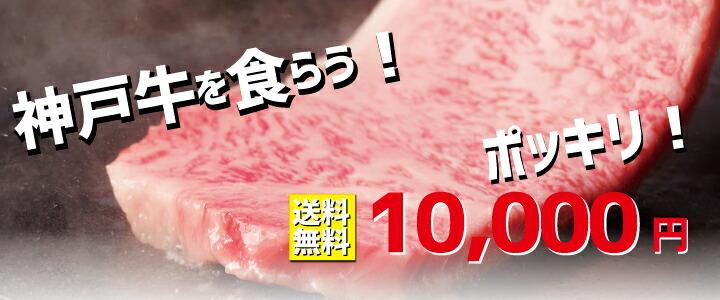 送料無料 神戸牛超お買い得 数量限定 なくなり次第終了