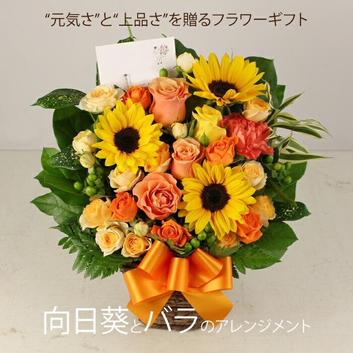 sun-rose-arange2.jpg