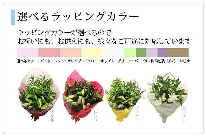 yuri-k-10-10.jpg