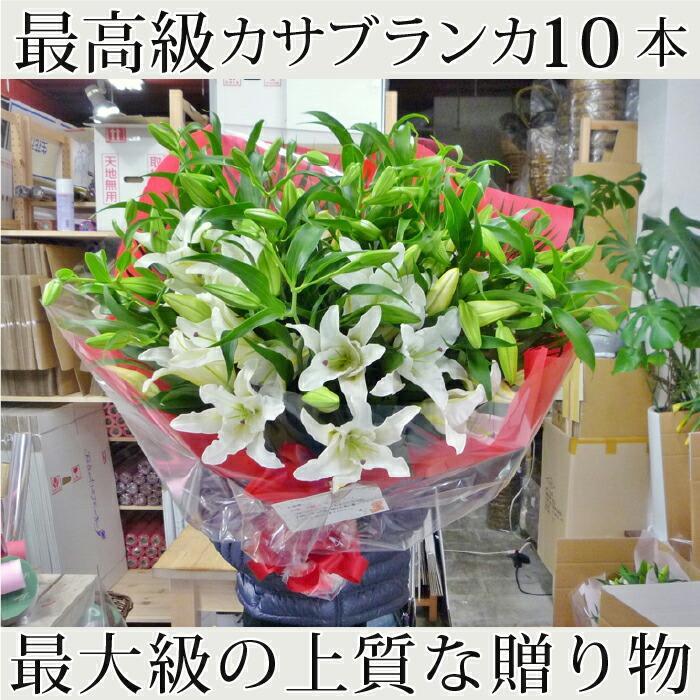 yuri-k-10-9.jpg