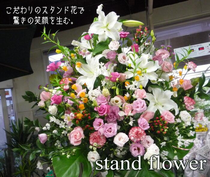 stand2-1.jpg