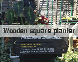 wooden-square-planter