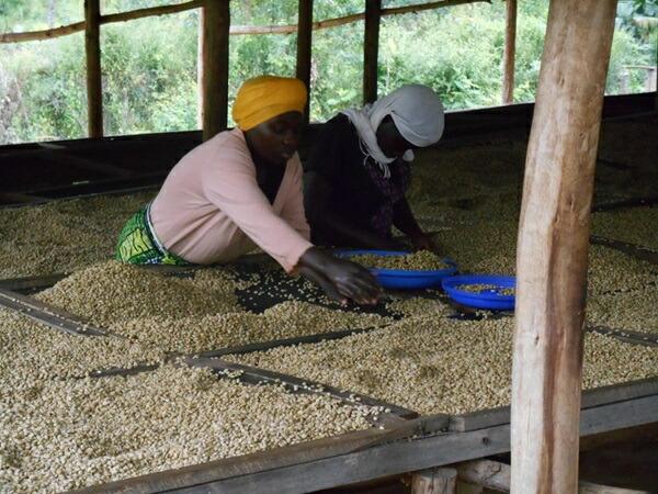 ルワンダ ニャミラマ