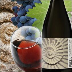 フォッシル fossil poポルトガルワイン 辛口 赤ワイン