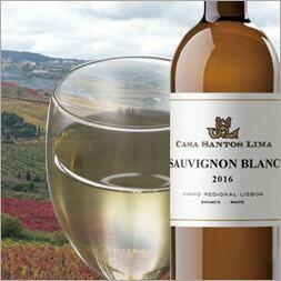 ソーヴィニヨン・ブラン ポルトガルワイン 辛口 白ワイン