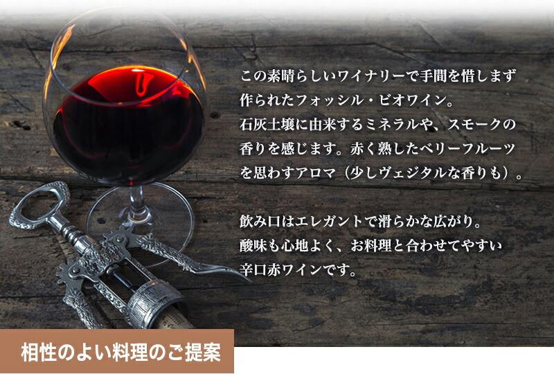 フォッシル・ビオワイン オーガニックワイン 赤ワイン ポルトガルワイン 辛口