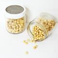 グリーンフィールド プロジェクト オーガニックの種から育てる発芽豆栽培キット