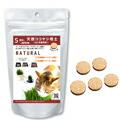 グリーンフィールド プロジェクト オーガニックの種から育てる発芽豆(有機JAS認証取得) Mサイズ
