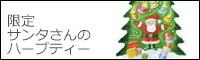 レーベンスバウム サンタさんのギフトティーアソート 42g(1.5〜2gx24袋) 【ハーブティー】