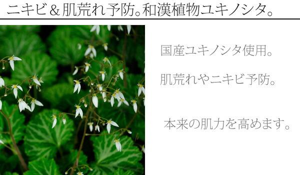ニキビケアから色白美人まで。和漢植物ユキノシタ。