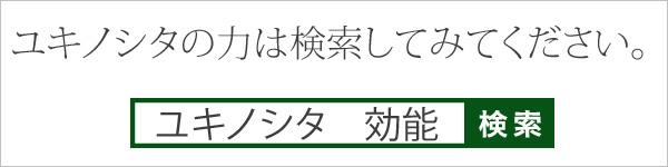 ユキノシタの力は検索してみてください。