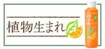 植物生まれ(オレンジ)