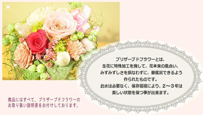 【プリザーブドフラワーとは】プリザーブドフラワーのお店ムニュムニュ【Flower Munyu Munyu】