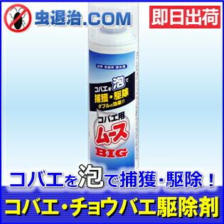 【あす楽】ムース状の固い泡で コバエ・チョウバエを発生源駆除 コバエ用ムースBIG(400ml)