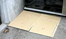 Place Glue Traps