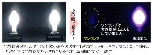ワンランプ紫外線カット