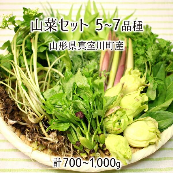 山菜セット