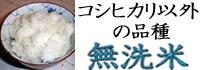 コシヒカリ以外の無洗米