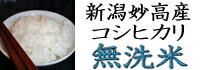 無洗米コシヒカリ