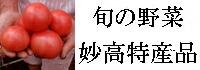 高原トマト販売
