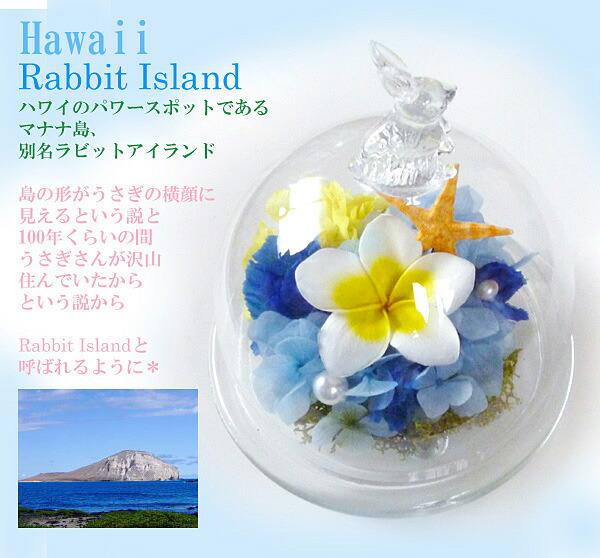 ハワイ プリザーブドフラワー