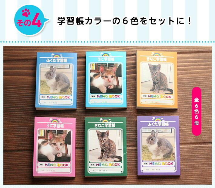 その4 学習帳カラーの6色をセットに! 全6色6冊