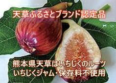 熊本県天草のイチジクジャム