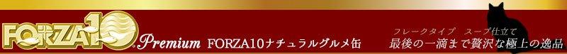 FORZA10 maintenance line(フォルツァディエチ プレミアムライン)