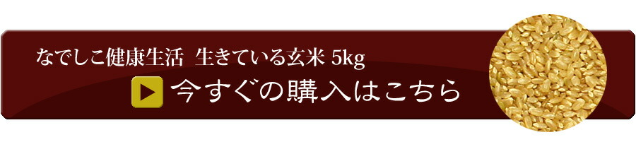生きている玄米 5kgカートへ