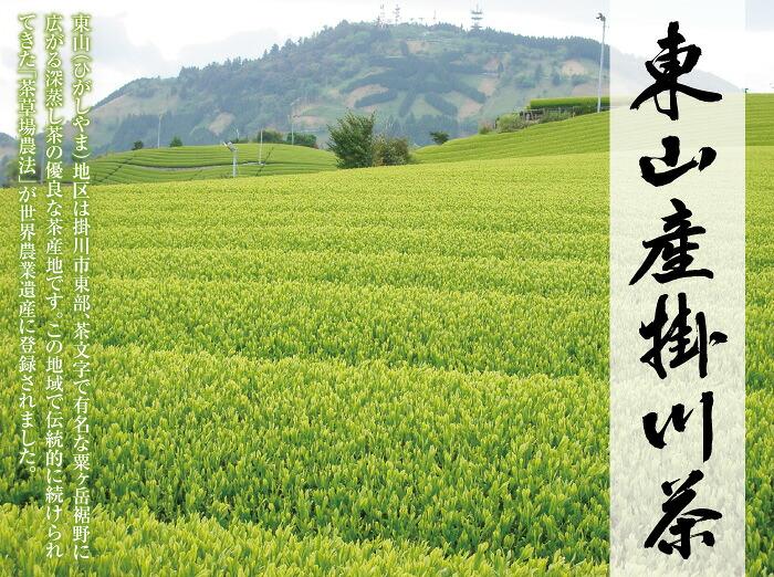 東山産イメージ画像