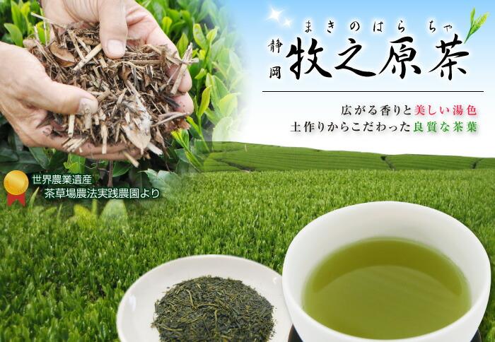 長峰製茶の牧之原茶
