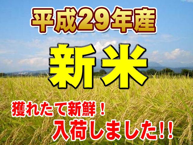 九州の新米看板
