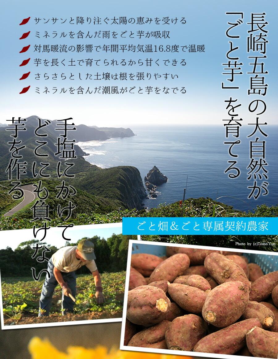 ポイント1:五島の気候がサツマイモに適している