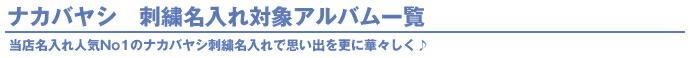 ナカバヤシ 刺繍名入れ ネーム入れ アルバム フエルアルバム