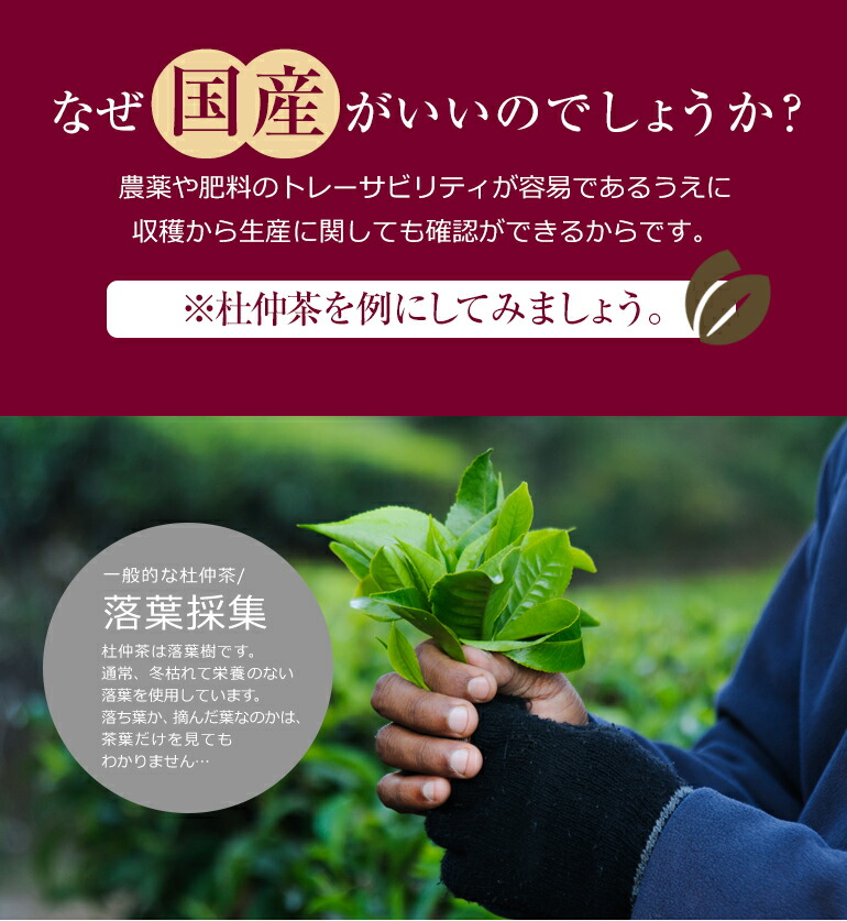 なぜ国産がいいのでしょうか?農薬や肥料のトレーサビリティが安易であるうえに収穫から生産に関しても確認ができるからです。