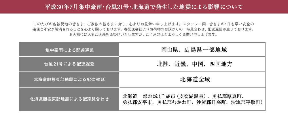 平成30年7月集中豪雨・台風21号・北海道で発生した地震による影響について