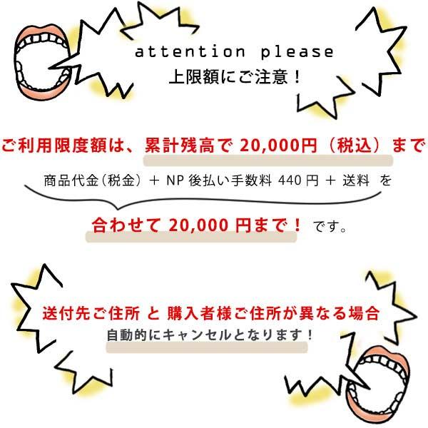 NP後払い限度額は20,000円まで